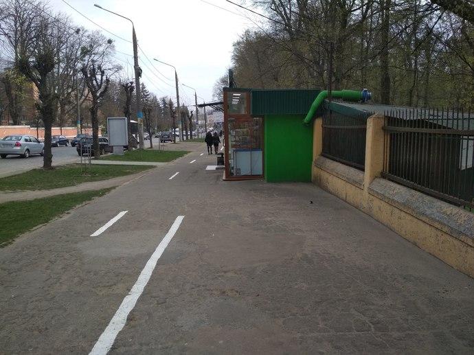 Жабка на тротуаре